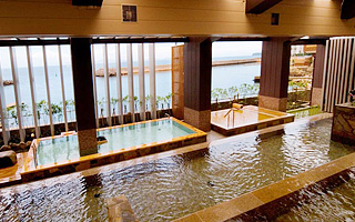 Hotel new awaji 5 star hotels in hyogo japan luxury for Terrace house mizuki
