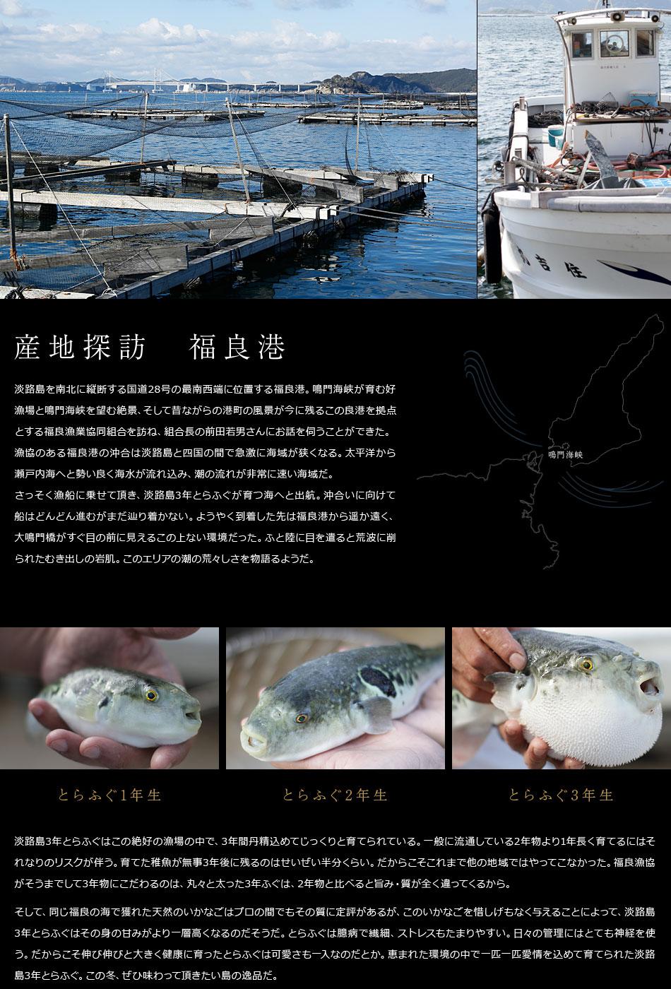 産地探訪 福良港